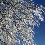 Băng tuyết trắng xóa trên Cao Bằng