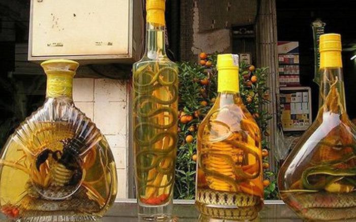 Rượu rắn bồi bổ quá nhiều gây liệt dương ở nam giới